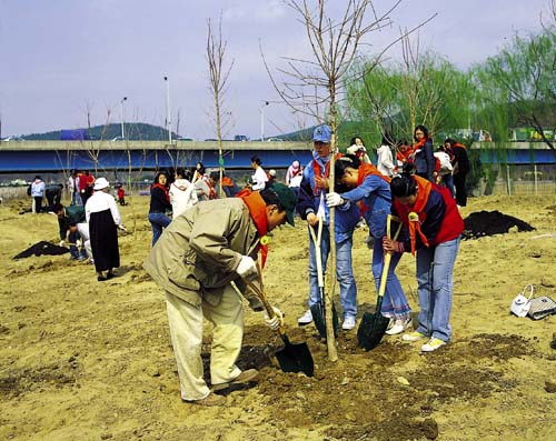 2005 범시민 나무심기 행사