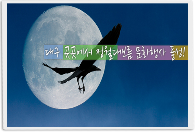 도심 곳곳 정월대보름 행사'풍성'