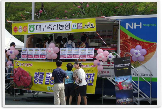 시름하는 대구·경북 축산농가와'동고동락'