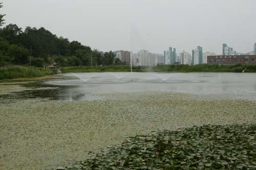 북구 운암지 수변공원 1