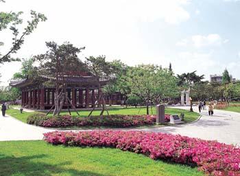 경상감영공원 꽃과 봄전경
