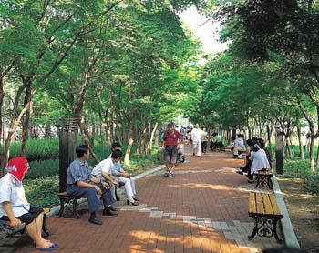 국채보상운동기념공원 푸른 숲이미지