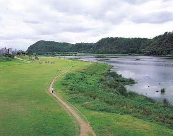 금호강전경