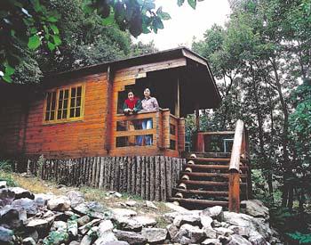 자연휴양림 통나무집