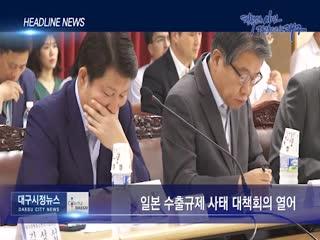 시정영상뉴스 제58호(2019-08-09)