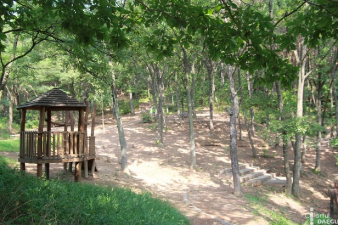 도심 속 웰빙 #2 운암지 수변공원과 사문진 주막촌