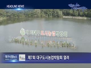 시정영상뉴스 제70호(2019-09-27)