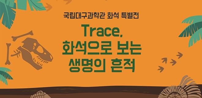 화석 특별전 '트레이스(Trace), 화석으로 보는 생명의 흔적' 개최