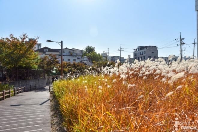 대구의 가을 #2 / 아양기찻길과 영남제일관, 운암지 수변공원