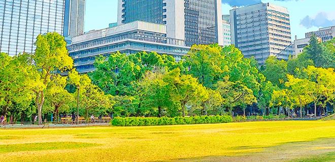 대구시, 공원일몰제 대비 성과로 도시공원 73% 지켰다!