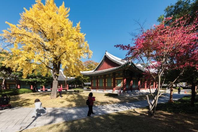 경상감영공원(2020대구화보 p26)