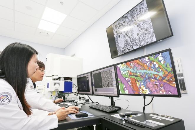 첨단뇌연구장비센터(2020대구화보 p86)