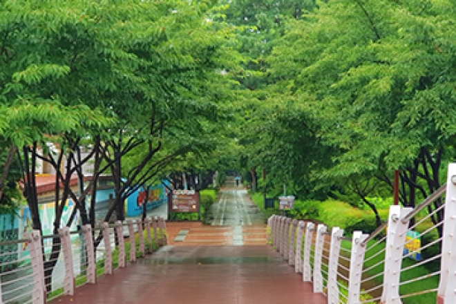 건강한 숨 · 깨끗한 물 · 푸른 숲 [녹색도시 대구]
