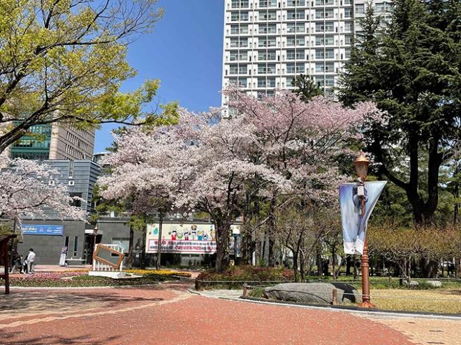 국채보상운동기념공원, 2·28기념중앙공원에 '야외 미술 전시회' 개최