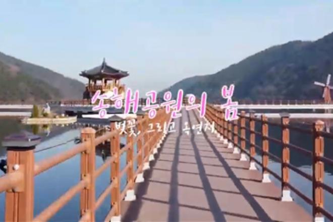 따뜻한 날씨 속 송해공원 나들이 같이 가요!(영상)