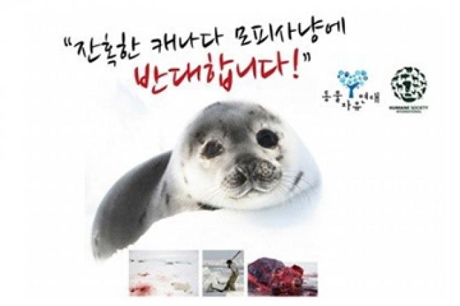 [환경] 하프물범 살리기!