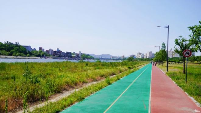 금호강 자전거길 온 가족 자전거 타기