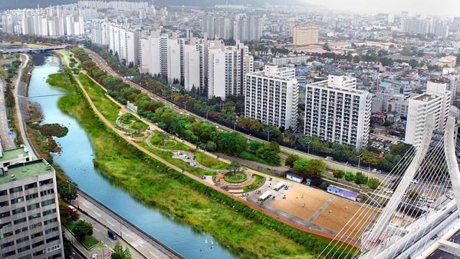 신천 대봉교 둔치, 맑은 물과 역사 체험 공간으로 새 단장
