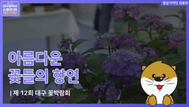 '꽃으로 힐링하다' 제 12회 대구꽃박람회(영상)