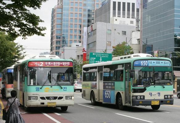 2017대구국제마라톤대회 시내버스 64개 노선 우회운행