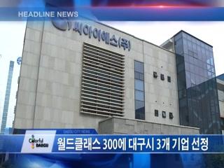 시정영상뉴스 제35호(2017-05-09)