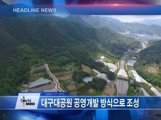 시정영상뉴스 제38호(2017-05-19)
