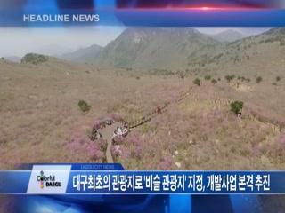시정영상뉴스 제43호(2017-06-06)