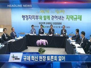 시정영상뉴스 제53호(2017-07-11)