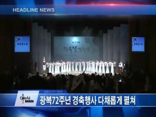 시정영상뉴스 제64호(2017-08-18)