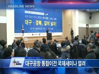 시정영상뉴스 제95호(2017-12-12)