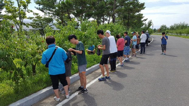 현풍하수처리장 '복숭아 따기 체험 행사' 개최
