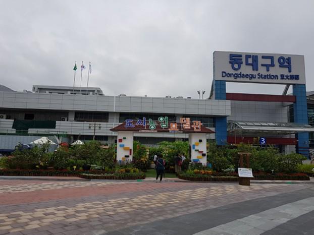 동대구역 광장 도시농업 모델관 전시회 개최