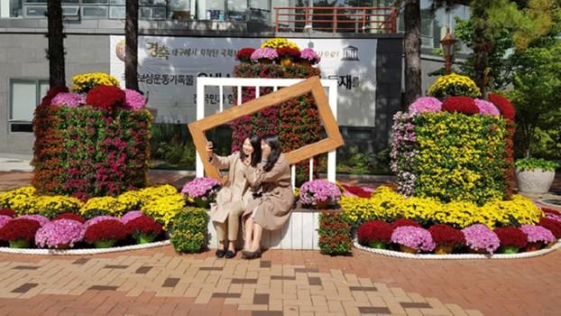 국채보상운동기념공원, 국화꽃 한마당 개최