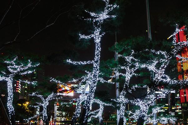 대구은행역/범어네거리 교통섬/앞산 카페거리 - 대구 크리스마스 가볼만한 곳