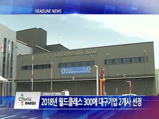 시정영상뉴스 제42호(2018-05-29)