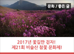 2017년 꽃길만 걷자! 달성군 대표축제, 제21회 비슬산 참꽃 문화제 다녀오다!