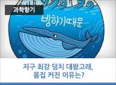 지구 최강 덩치 대왕고래, 몸집 커진 이유는?