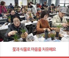 꽃과 식물로 마음을 치유해요  대구시농업기술센터 시민의 정서안정을 위한 '원예치료' 교육 추진