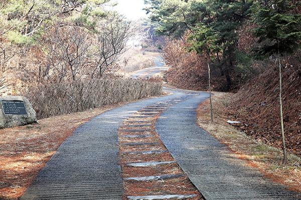 대구 걷기 좋은 길 '팔공산 왕건길' 트레킹 다녀왔어요!