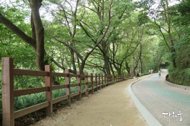 대프리카 더위 대피소를 찾는다면? 나무그늘 무성한 고산골 맨발산책길로 오세요!